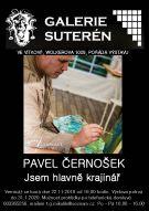Pavel Černošek - výstava obrazů 1