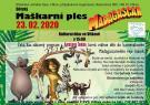 MAŠKARNÍ PLES SVČ VÍTKOV - MADAGASKAR 1