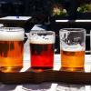 Pivní festival 1